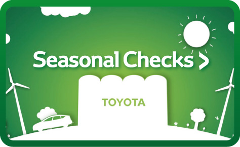 Seasonal Checks